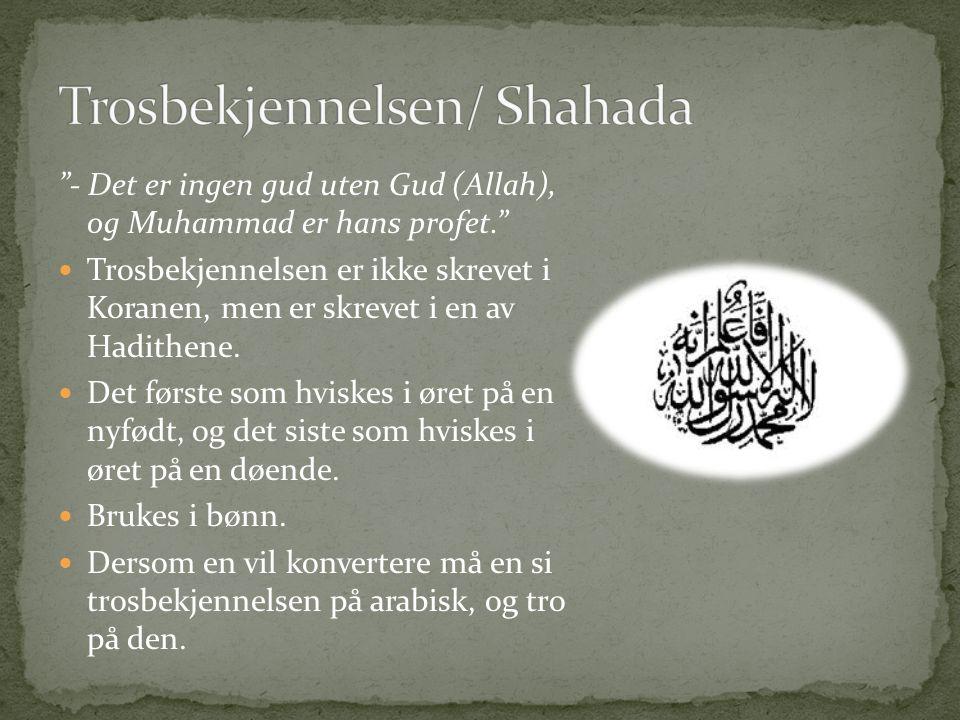 """""""- Det er ingen gud uten Gud (Allah), og Muhammad er hans profet."""" Trosbekjennelsen er ikke skrevet i Koranen, men er skrevet i en av Hadithene. Det f"""