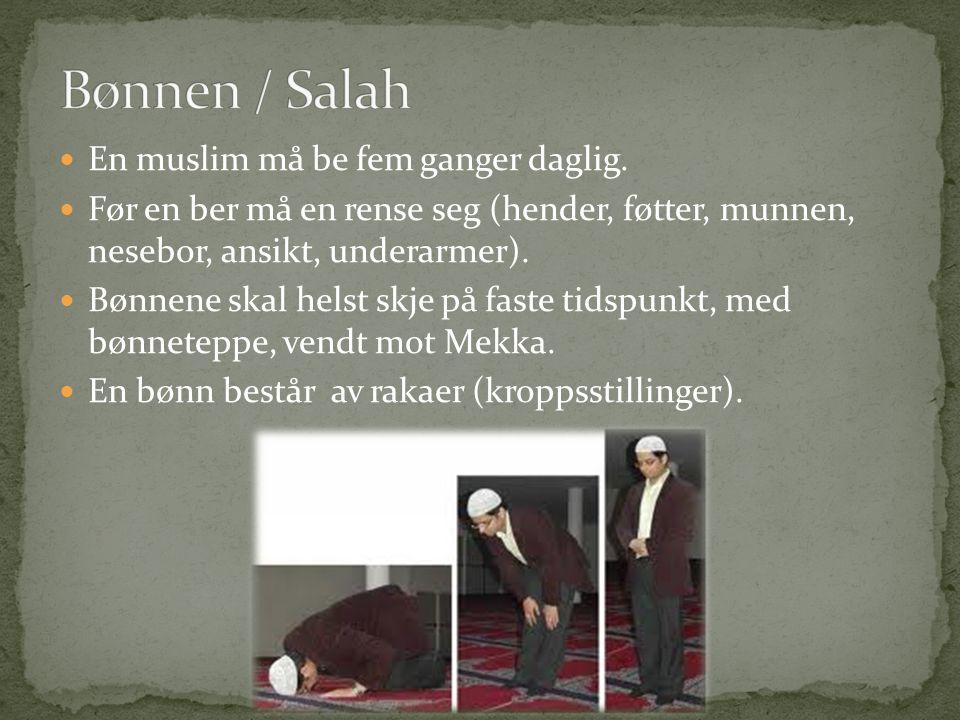 En muslim må be fem ganger daglig. Før en ber må en rense seg (hender, føtter, munnen, nesebor, ansikt, underarmer). Bønnene skal helst skje på faste