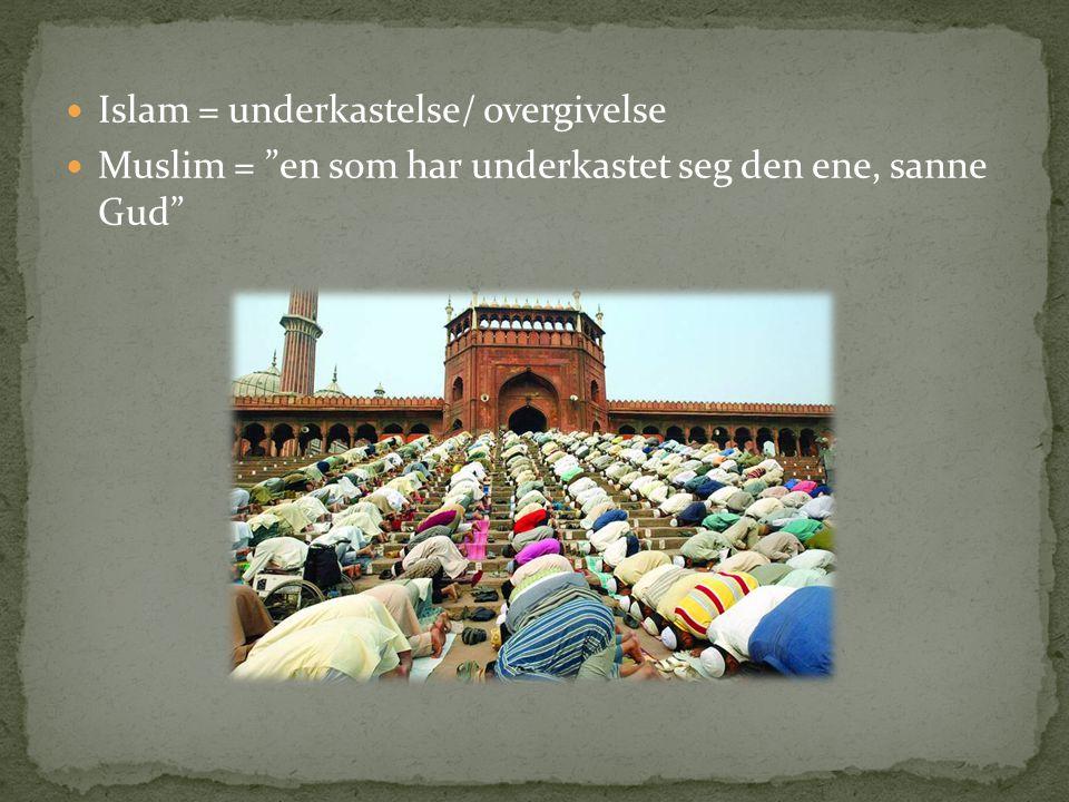 """Islam = underkastelse/ overgivelse Muslim = """"en som har underkastet seg den ene, sanne Gud"""""""