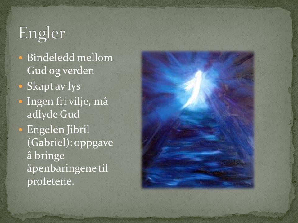 Bindeledd mellom Gud og verden Skapt av lys Ingen fri vilje, må adlyde Gud Engelen Jibril (Gabriel): oppgave å bringe åpenbaringene til profetene.