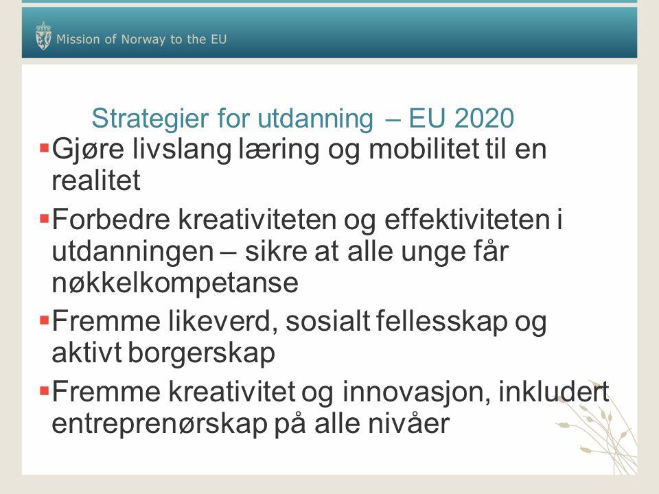 Strategier for utdanning – EU 2020  Gjøre livslang læring og mobilitet til en realitet  Forbedre kreativiteten og effektiviteten i utdanningen – sikre at alle unge får nøkkelkompetanse  Fremme likeverd, sosialt fellesskap og aktivt borgerskap  Fremme kreativitet og innovasjon, inkludert entreprenørskap på alle nivåer