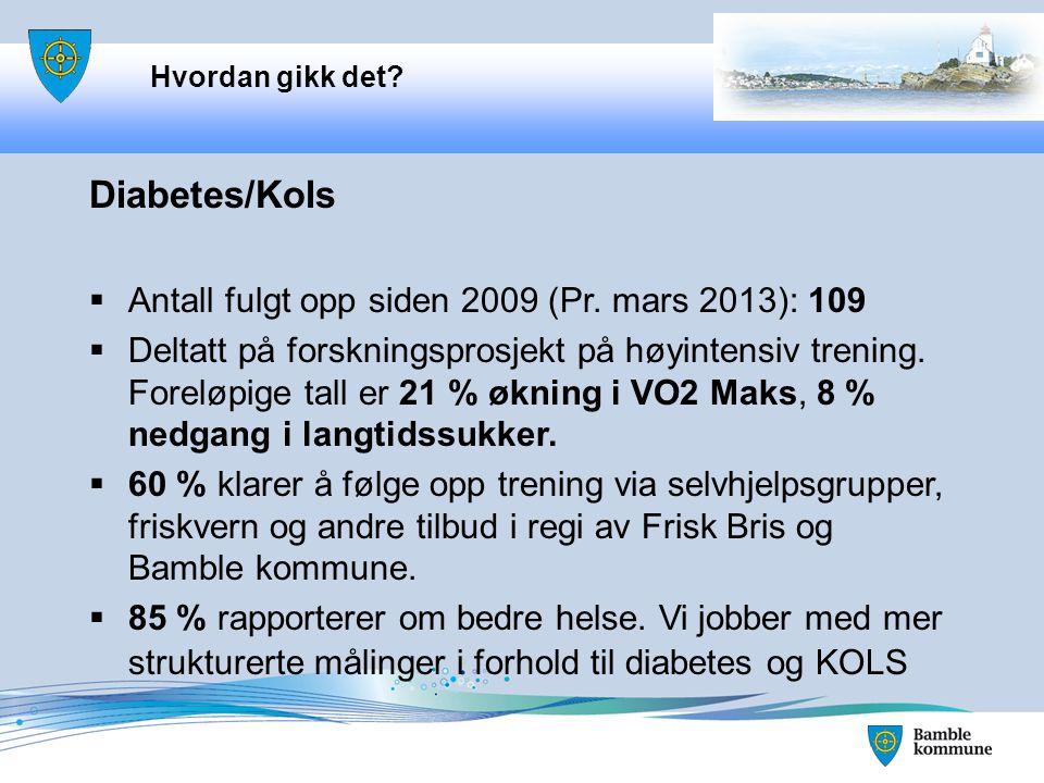 Hvordan gikk det.Diabetes/Kols  Antall fulgt opp siden 2009 (Pr.