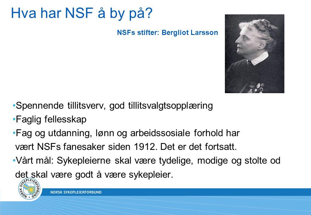 Hva har NSF å by på? NSFs stifter: Bergliot Larsson Spennende tillitsverv, god tillitsvalgtsopplæring Faglig fellesskap Fag og utdanning, lønn og arbe