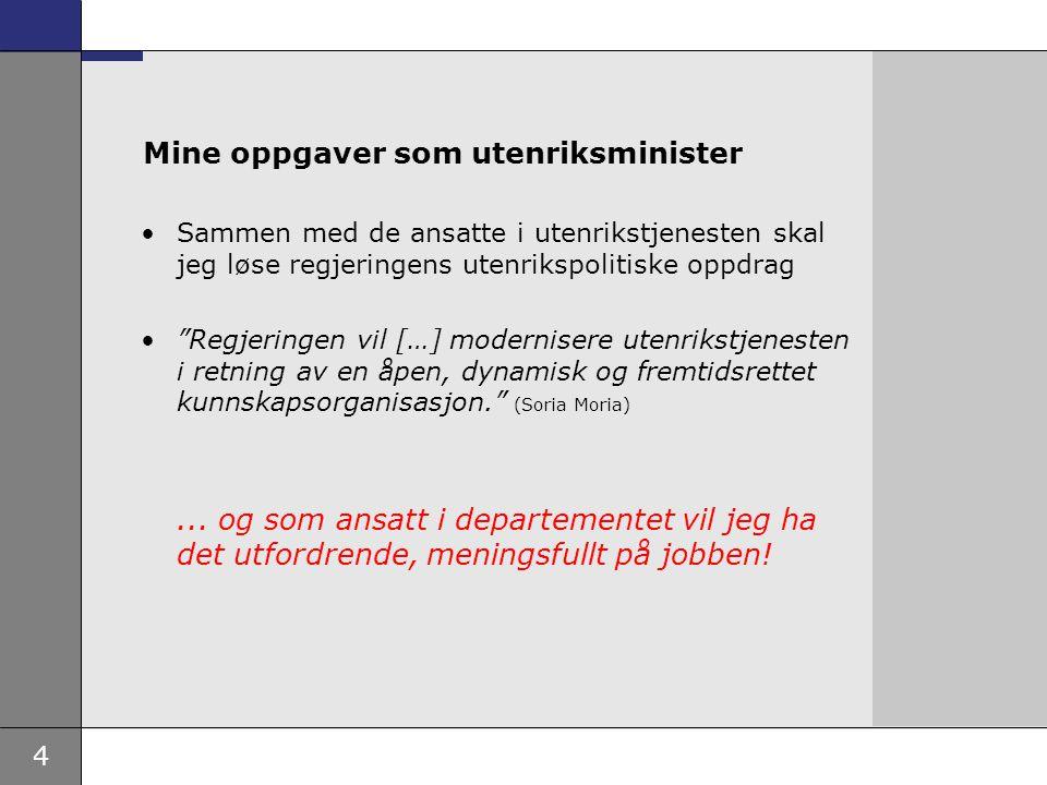 25 Avdeling for regionale spørsmål og utvikling Politisk mandat: Ivareta kvalitet og målretting av norsk utviklingspolitikk på en måte som bidrar til å nå FNs tusenårsmål og i tråd med norske satsinger.