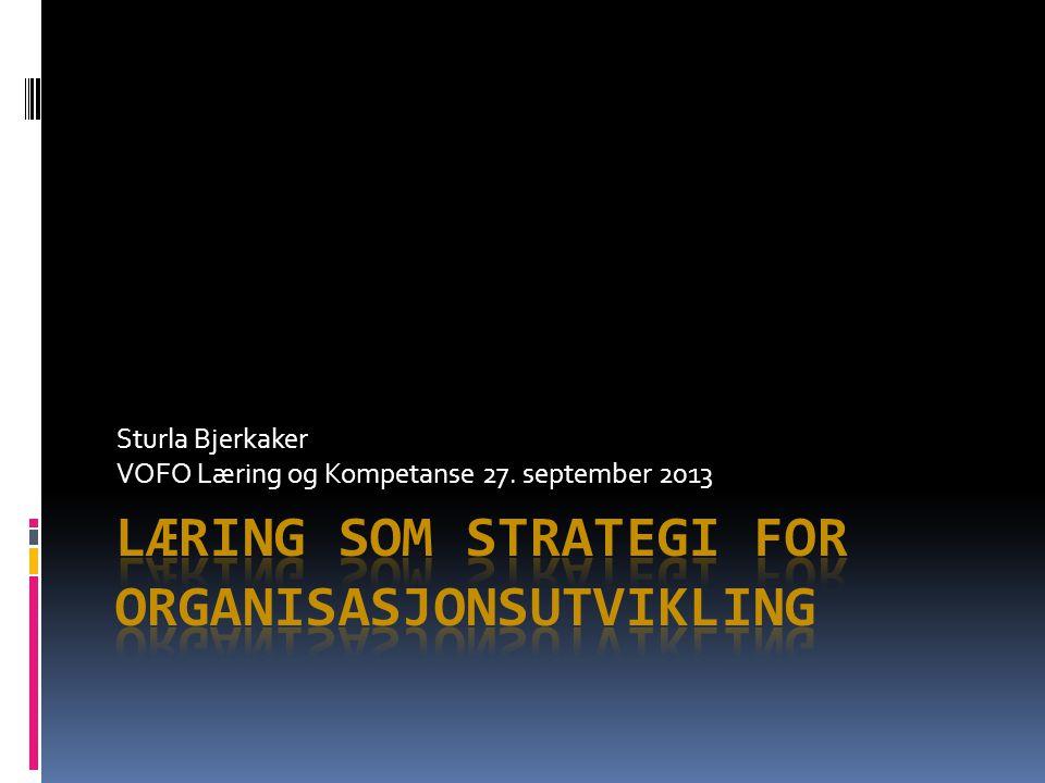 Sturla Bjerkaker VOFO Læring og Kompetanse 27. september 2013