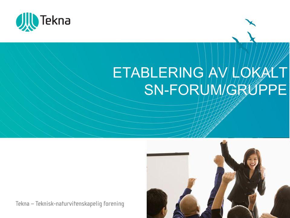 ETABLERING AV LOKALT SN-FORUM/GRUPPE