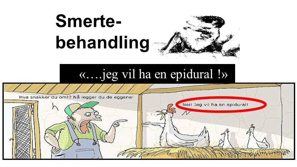 Epidural analgesi (EDA) EDA «gullstandard» Men noen……  kan ikke få  ønsker ikke  ikke mulig