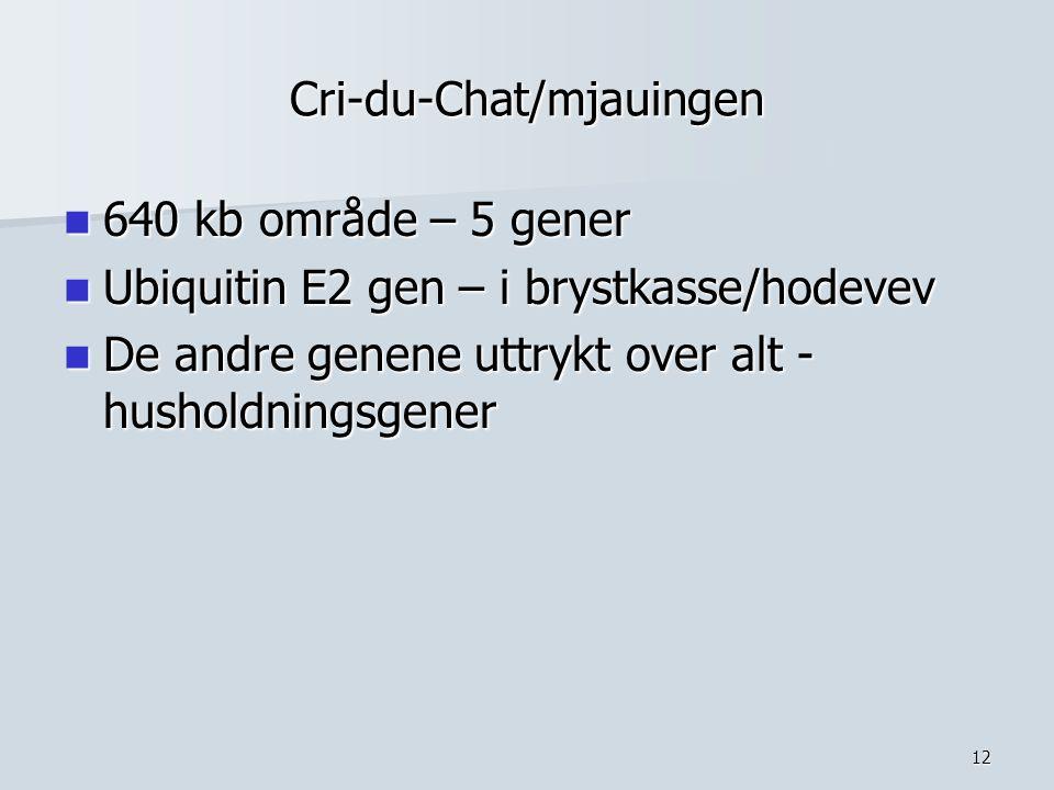 12 Cri-du-Chat/mjauingen 640 kb område – 5 gener 640 kb område – 5 gener Ubiquitin E2 gen – i brystkasse/hodevev Ubiquitin E2 gen – i brystkasse/hodev