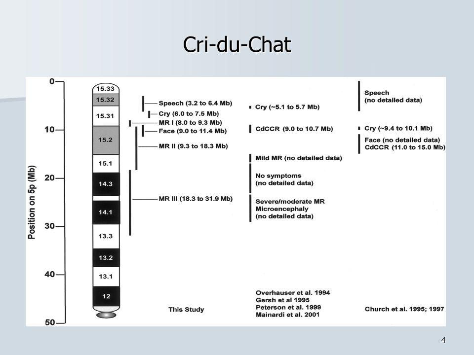 4 Cri-du-Chat