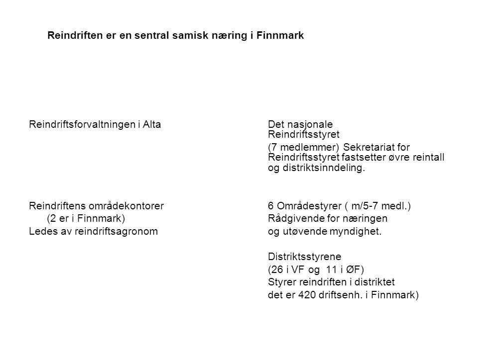 Reindriften er en sentral samisk næring i Finnmark Reindriftsforvaltningen i AltaDet nasjonale Reindriftsstyret (7 medlemmer) Sekretariat for Reindriftsstyret fastsetter øvre reintall og distriktsinndeling.