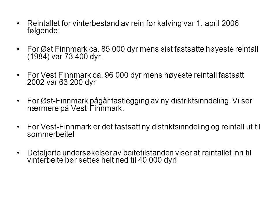 Reintallet for vinterbestand av rein før kalving var 1. april 2006 følgende: For Øst Finnmark ca. 85 000 dyr mens sist fastsatte høyeste reintall (198