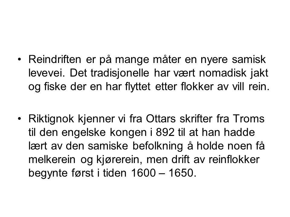 Reindriften er på mange måter en nyere samisk levevei.