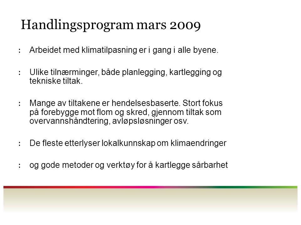 Handlingsprogram mars 2009 : Arbeidet med klimatilpasning er i gang i alle byene. : Ulike tilnærminger, både planlegging, kartlegging og tekniske tilt