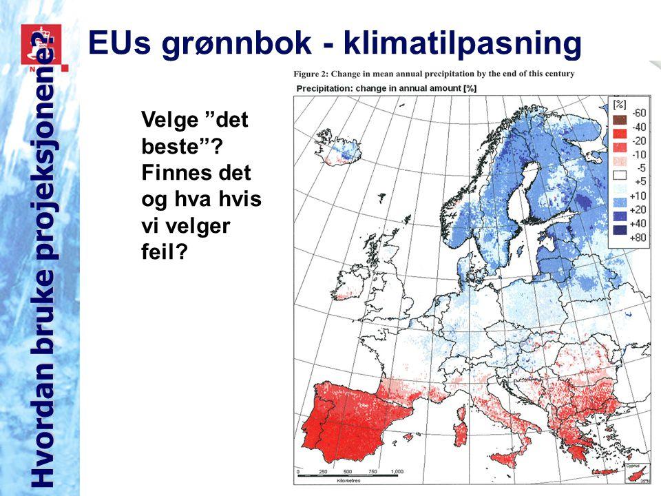 EUs grønnbok - klimatilpasning Velge det beste . Finnes det og hva hvis vi velger feil.
