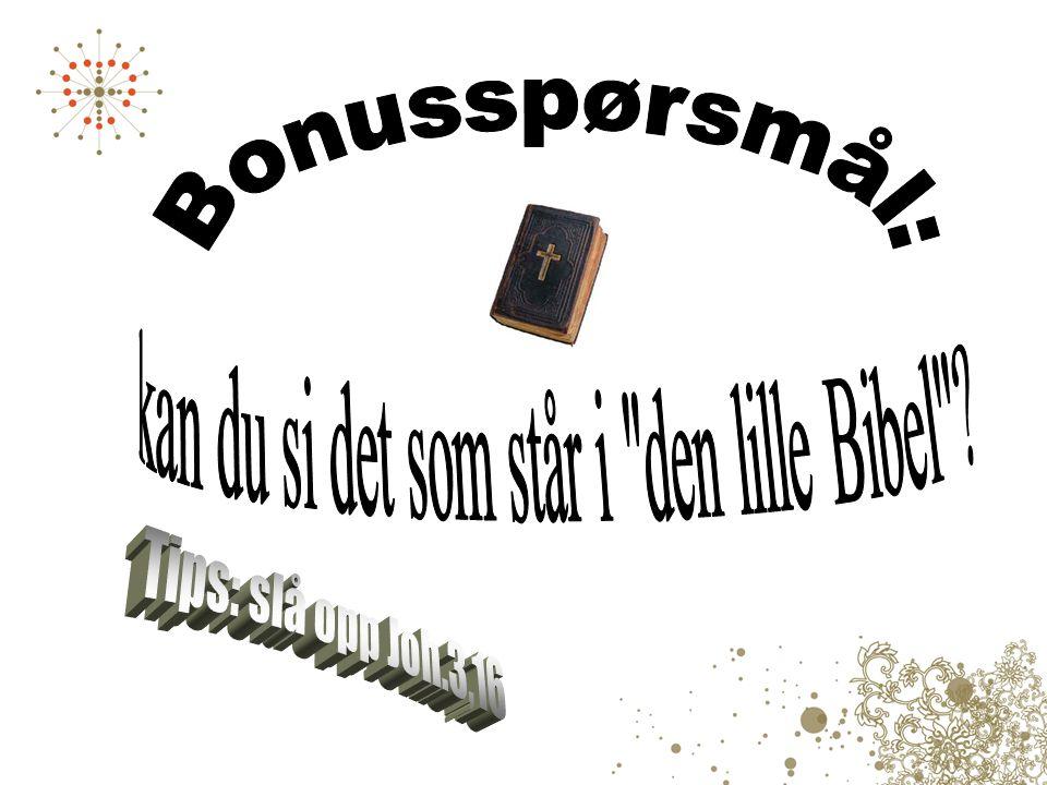 Den lille Bibel