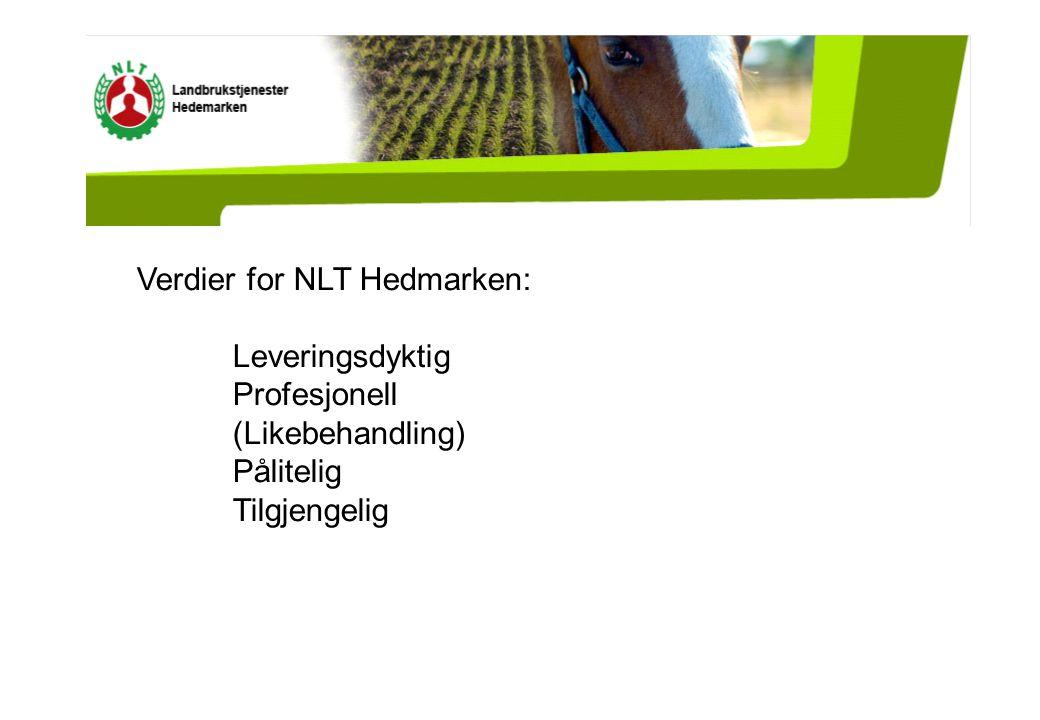 Verdier for NLT Hedmarken: Leveringsdyktig Profesjonell (Likebehandling) Pålitelig Tilgjengelig
