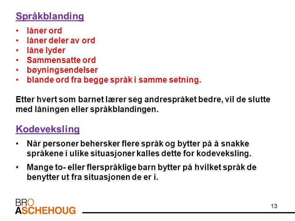 Språkblanding låner ord låner deler av ord låne lyder Sammensatte ord bøyningsendelser blande ord fra begge språk i samme setning. Etter hvert som bar