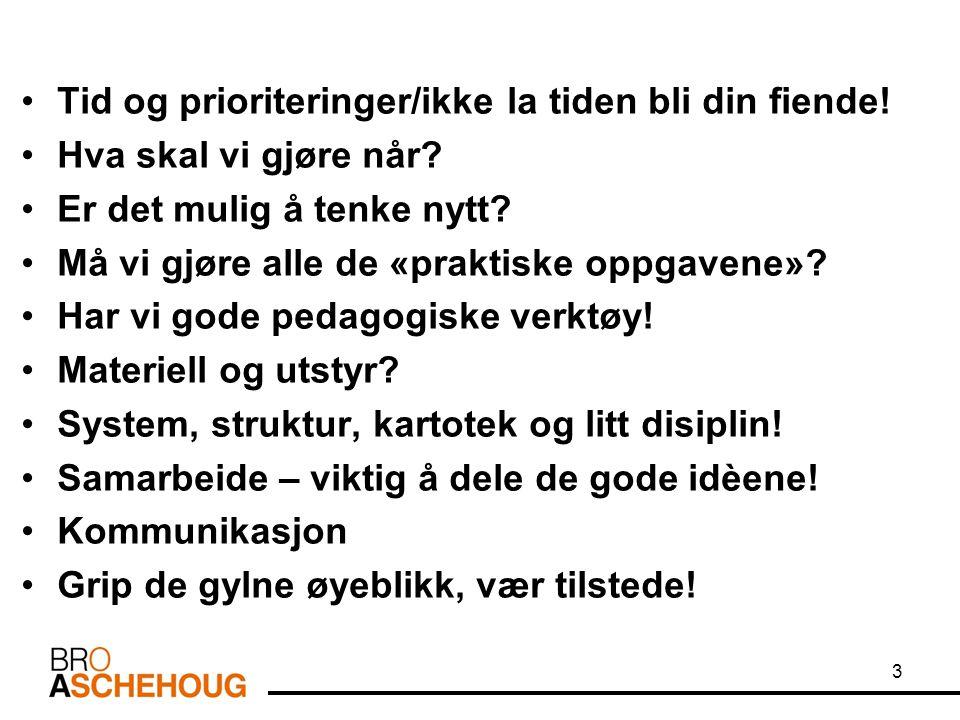 PRAGMATISKE FERDIGHETER ER: Evne til å kommunisere/bruken av språket.