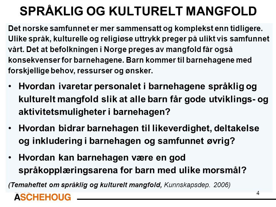 Personale med minoritetsbakgrunn – «brobyggere»: Flerspråklig kompetanse Følelsesmessig og kulturell forankring til flere land enn Norge.