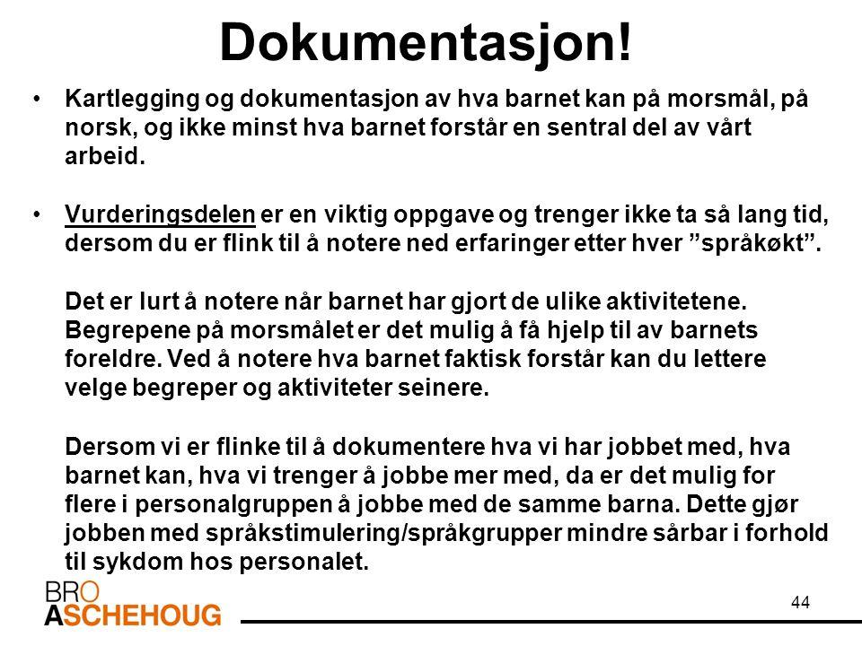 Dokumentasjon! Kartlegging og dokumentasjon av hva barnet kan på morsmål, på norsk, og ikke minst hva barnet forstår en sentral del av vårt arbeid. Vu