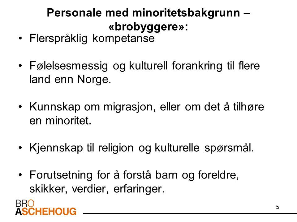 Personale med minoritetsbakgrunn – «brobyggere»: Flerspråklig kompetanse Følelsesmessig og kulturell forankring til flere land enn Norge. Kunnskap om