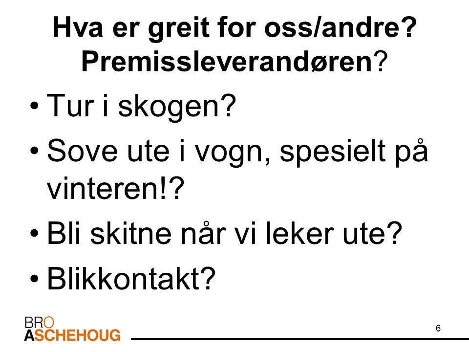 Fonologi: Norske språklyder som har meningsskillende funksjon kaller vi for fonemer.
