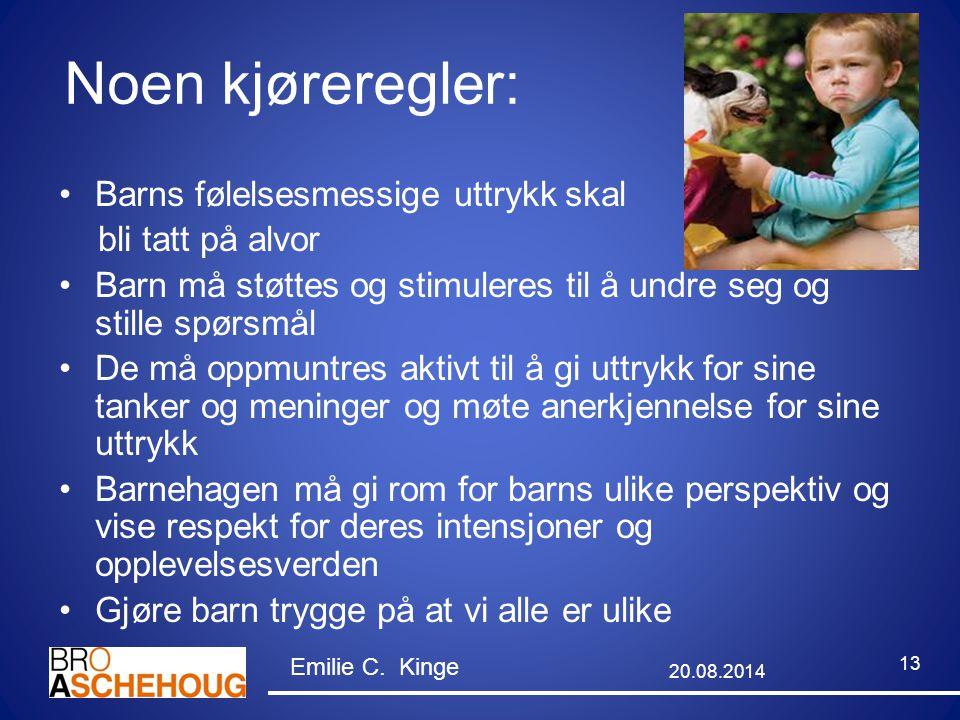Noen kjøreregler: Barns følelsesmessige uttrykk skal bli tatt på alvor Barn må støttes og stimuleres til å undre seg og stille spørsmål De må oppmuntr