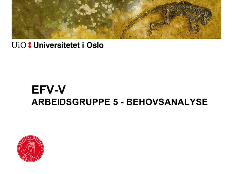 EFV-V ARBEIDSGRUPPE 5 - BEHOVSANALYSE