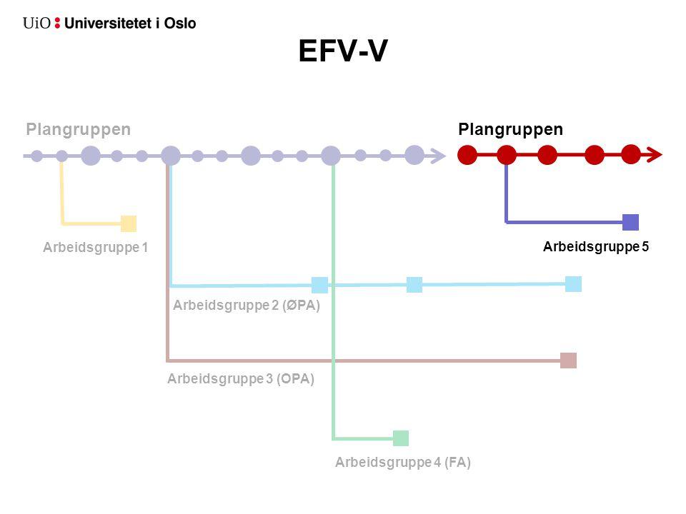 Plangruppen Arbeidsgruppe 2 (ØPA) Arbeidsgruppe 3 (OPA) Arbeidsgruppe 1 EFV-V Arbeidsgruppe 4 (FA) Arbeidsgruppe 5 Plangruppen