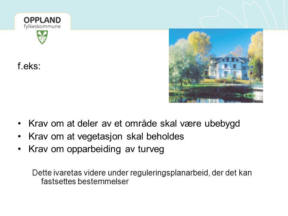 Reguleringsplan Arealformål: 1.Bebyggelse og anlegg: uteoppholdsarealer 3.