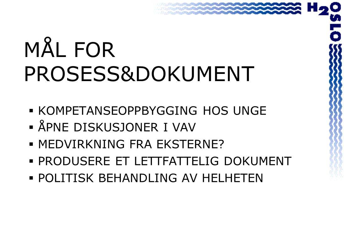 MÅL FOR PROSESS&DOKUMENT  KOMPETANSEOPPBYGGING HOS UNGE  ÅPNE DISKUSJONER I VAV  MEDVIRKNING FRA EKSTERNE.