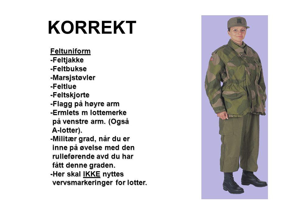 KORREKT Feltuniform-Feltjakke-Feltbukse-Marsjstøvler-Feltlue-Feltskjorte -Flagg på høyre arm -Ermlets m lottemerke på venstre arm. (Også på venstre ar