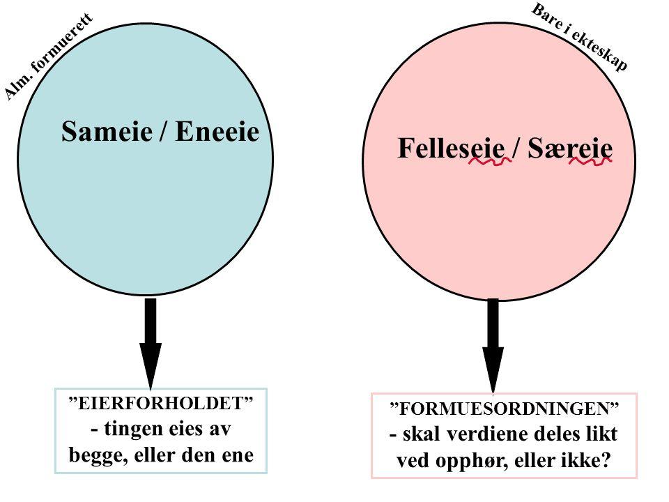 """Sameie / Eneeie Felleseie / Særeie """"EIERFORHOLDET"""" - tingen eies av begge, eller den ene """"FORMUESORDNINGEN"""" - skal verdiene deles likt ved opphør, ell"""