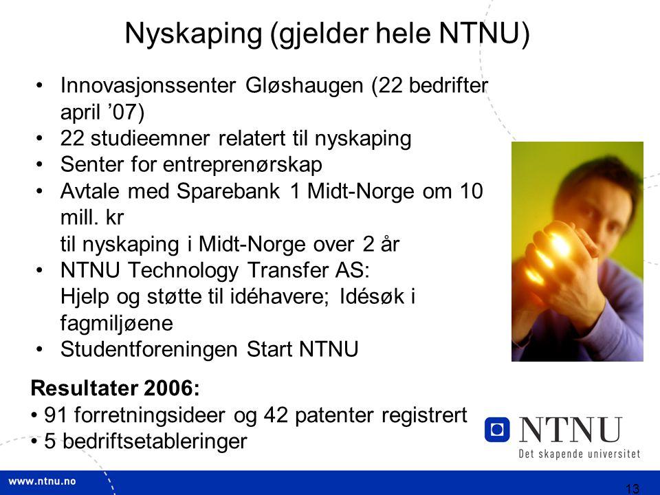 13 Nyskaping (gjelder hele NTNU) Innovasjonssenter Gløshaugen (22 bedrifter april '07) 22 studieemner relatert til nyskaping Senter for entreprenørskap Avtale med Sparebank 1 Midt-Norge om 10 mill.