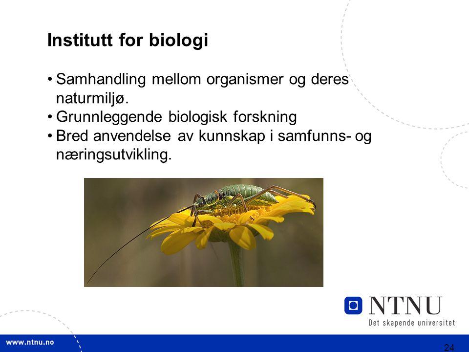 24 Institutt for biologi Samhandling mellom organismer og deres naturmiljø. Grunnleggende biologisk forskning Bred anvendelse av kunnskap i samfunns-