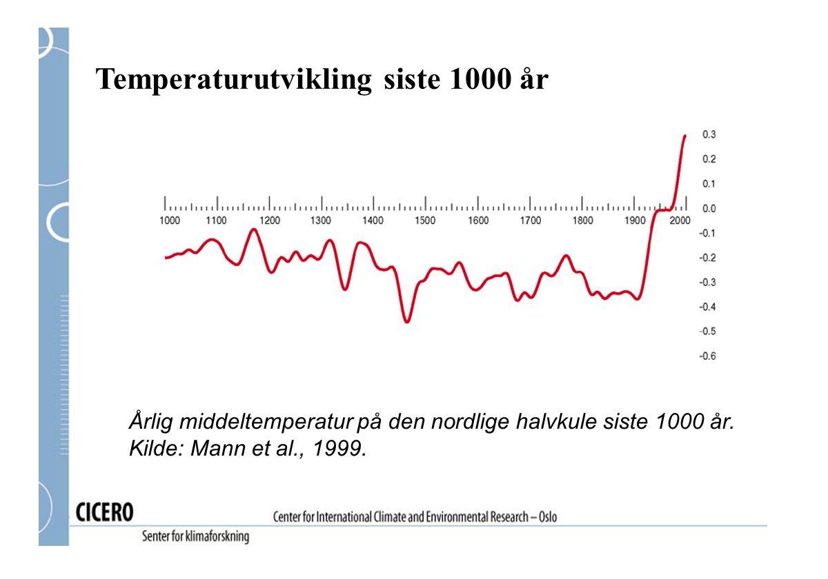 Temperaturutvikling siste 1000 år Årlig middeltemperatur på den nordlige halvkule siste 1000 år. Kilde: Mann et al., 1999.