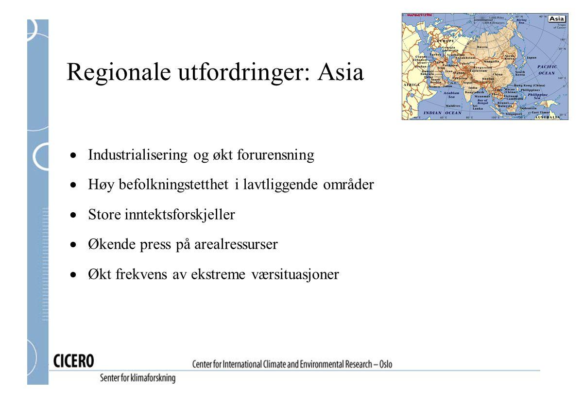 Regionale utfordringer: Asia  Industrialisering og økt forurensning  Høy befolkningstetthet i lavtliggende områder  Store inntektsforskjeller  Økende press på arealressurser  Økt frekvens av ekstreme værsituasjoner