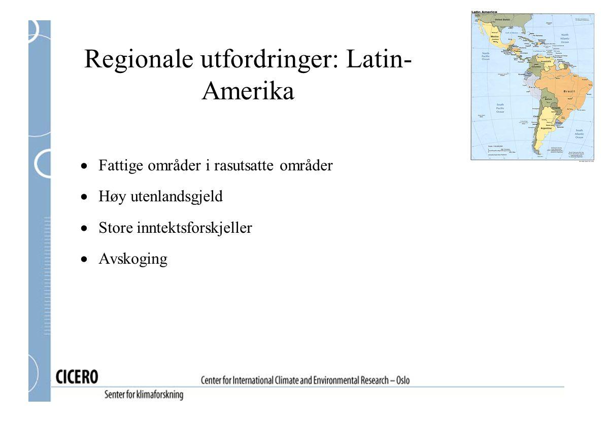 Regionale utfordringer: Latin- Amerika  Fattige områder i rasutsatte områder  Høy utenlandsgjeld  Store inntektsforskjeller  Avskoging