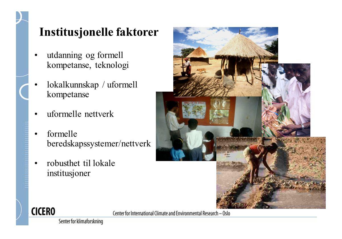 Institusjonelle faktorer utdanning og formell kompetanse, teknologi lokalkunnskap / uformell kompetanse uformelle nettverk formelle beredskapssystemer/nettverk robusthet til lokale institusjoner