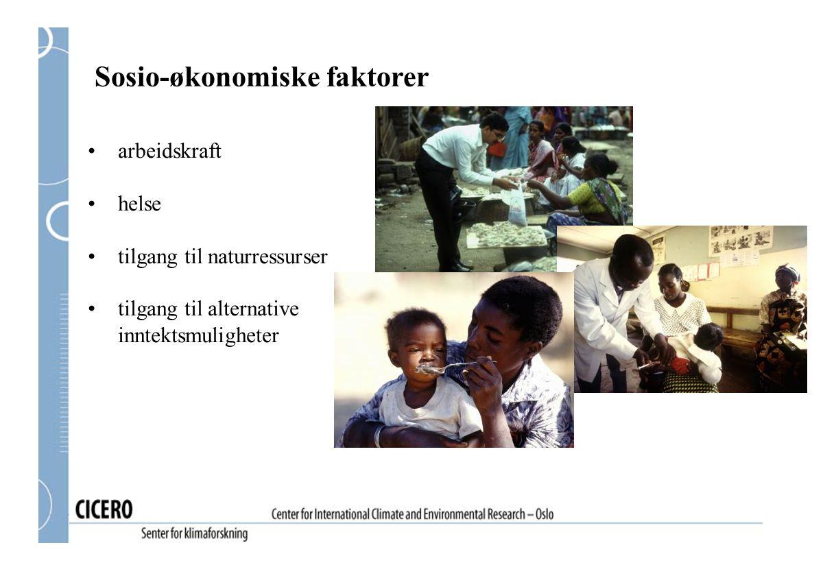 Sosio-økonomiske faktorer arbeidskraft helse tilgang til naturressurser tilgang til alternative inntektsmuligheter