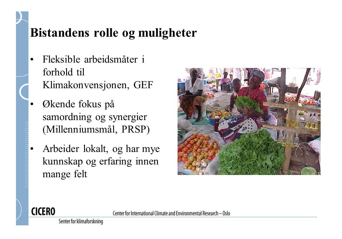 Bistandens rolle og muligheter Fleksible arbeidsmåter i forhold til Klimakonvensjonen, GEF Økende fokus på samordning og synergier (Millenniumsmål, PR
