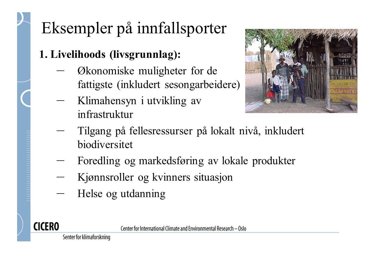 Eksempler på innfallsporter 1. Livelihoods (livsgrunnlag): – Økonomiske muligheter for de fattigste (inkludert sesongarbeidere) – Klimahensyn i utvikl