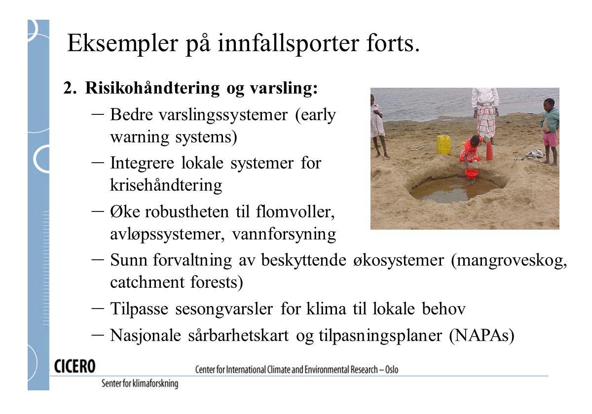 Eksempler på innfallsporter forts. 2.Risikohåndtering og varsling: – Bedre varslingssystemer (early warning systems) – Integrere lokale systemer for k