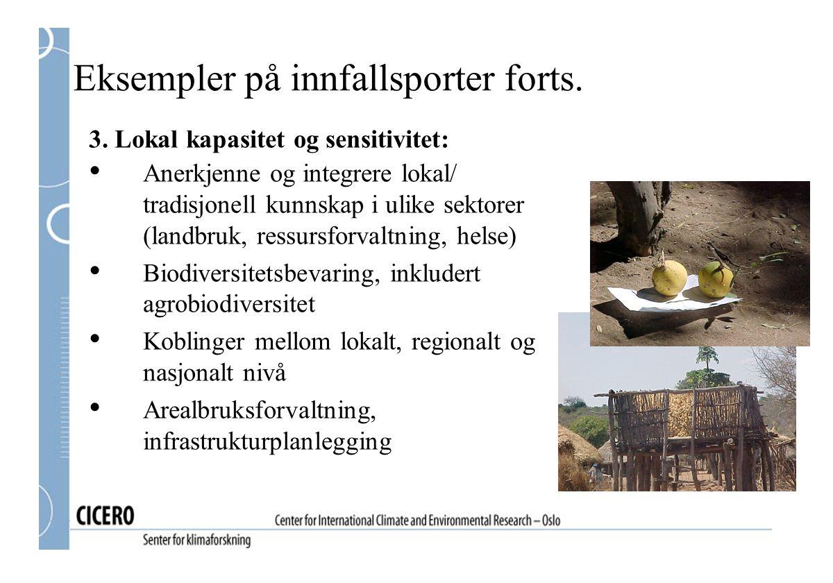 3. Lokal kapasitet og sensitivitet: Anerkjenne og integrere lokal/ tradisjonell kunnskap i ulike sektorer (landbruk, ressursforvaltning, helse) Biodiv