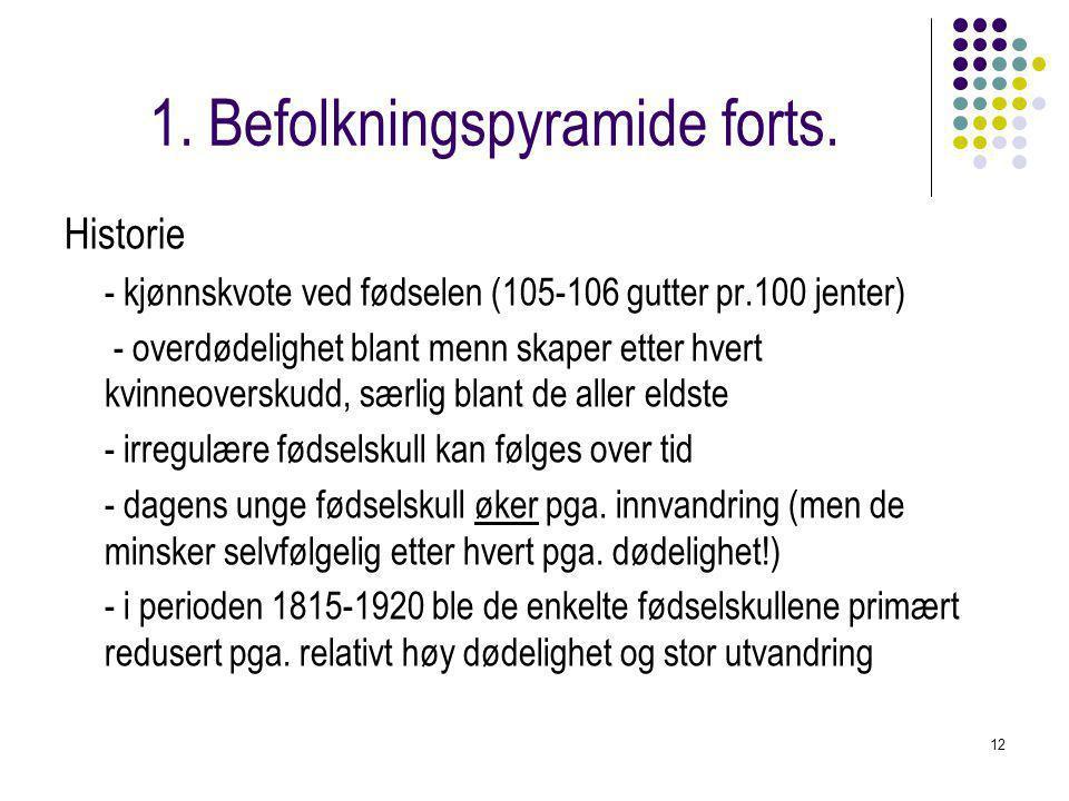 12 1.Befolkningspyramide forts.