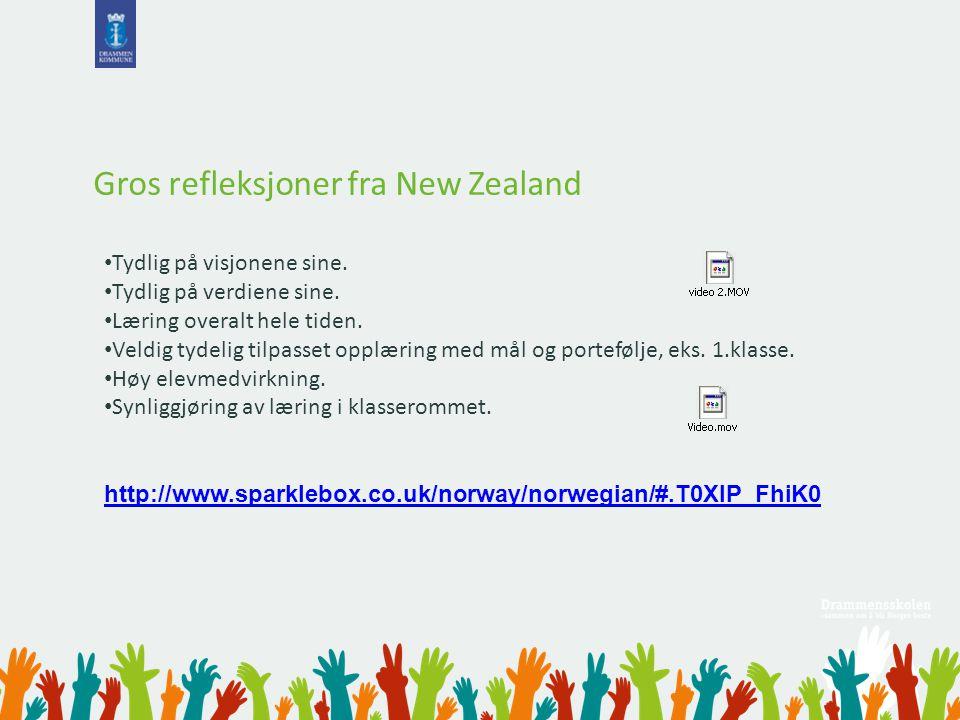 Gros refleksjoner fra New Zealand Tydlig på visjonene sine. Tydlig på verdiene sine. Læring overalt hele tiden. Veldig tydelig tilpasset opplæring med