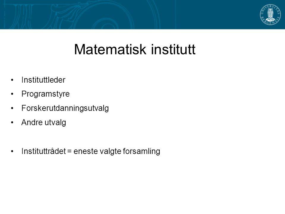 Matematisk institutt Instituttleder Programstyre Forskerutdanningsutvalg Andre utvalg Instituttrådet = eneste valgte forsamling