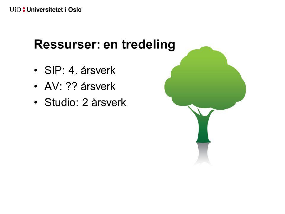 Ressurser: en tredeling SIP: 4. årsverk AV: årsverk Studio: 2 årsverk