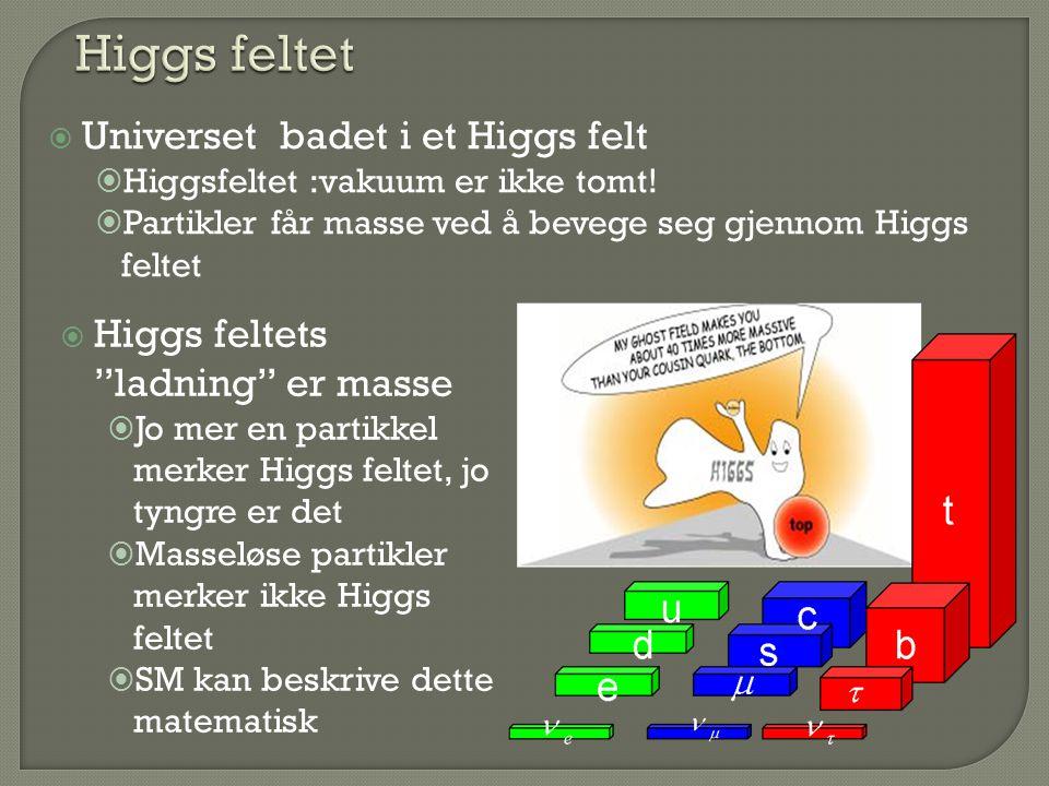 """ Higgs feltets """"ladning"""" er masse  Jo mer en partikkel merker Higgs feltet, jo tyngre er det  Masseløse partikler merker ikke Higgs feltet  SM kan"""
