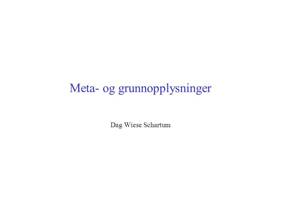 Meta- og grunnopplysninger Dag Wiese Schartum